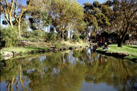 Trout Farm Tuki Ballarat