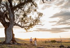 Tuki Ballarat Wedding Venues