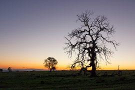 Tuki Ballarat Country getaway