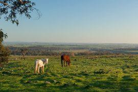 Tuki Daylesford Country getaway